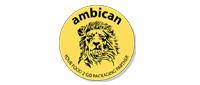 Ambican UK Ltd