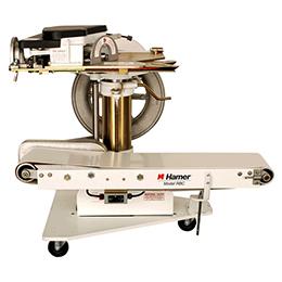 hamer-fischbein model rbc