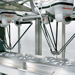 robotic high speed pick and place packaging