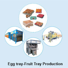 Egg tray Fruit Tray Production