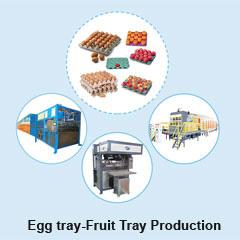 Egg tray Fruit Tray Production