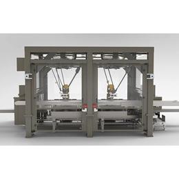 RC1000 Robotic Top Load Case Packer