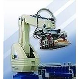 Fuji Robotic Bag Palletizers