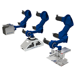 3-axis robot arm case packer