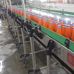 Bottle Conveyors Machine