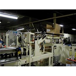 Model 110 Cartoning Machine