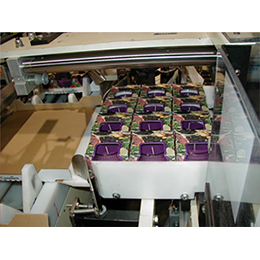 Model 130T Tray Packing Machine