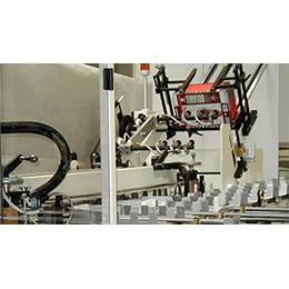Model 140 Cartoning Machine