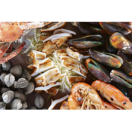 Fish & Seafood Packaging