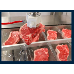 The Preferred Food-Safe Choice for Hygienic Thermoformer Loading