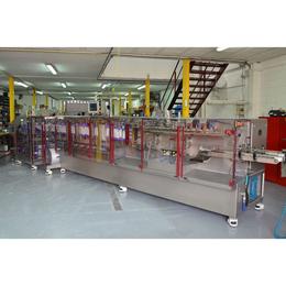 FLtècnics FL 1.4 / 1.7 Rollstock Pouch Machine