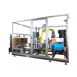 NRCP-5: Robotic Case Packer