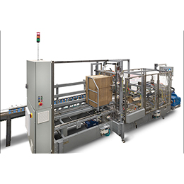HORIZONTAL CASE PACKER FEATURES