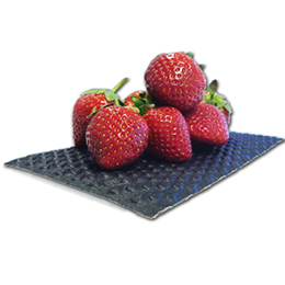 Absorbent cushioned pads for soft fruit
