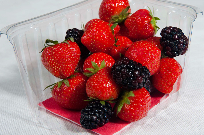 Compostable absorbent fruit pads