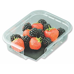 Compostable absorbent pads for fruit