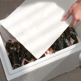 Saltwater release absorbent mats
