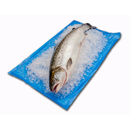 Sea fresh absorbent liners