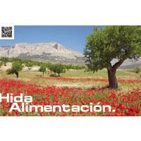 Murcia: the garden of Europe