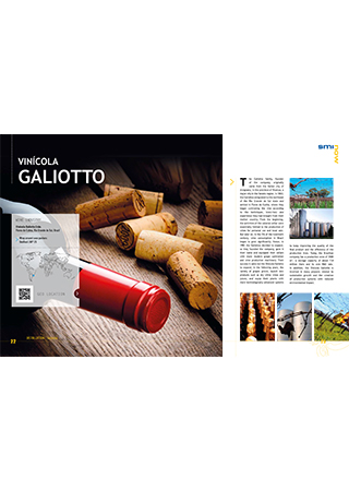 Vinícola Galiotto - Brazil