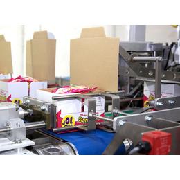 WestRock APS CF range Case Carton Erectors